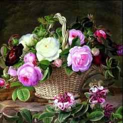 Dekorative servietter med engelske roser